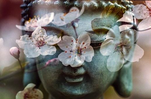 buddha-1279902__340 (1)