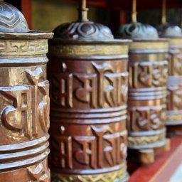 Chogyam Rinpoche