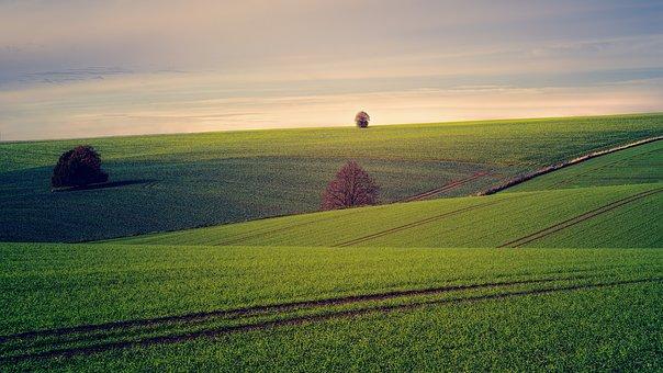 fields-3799279__340